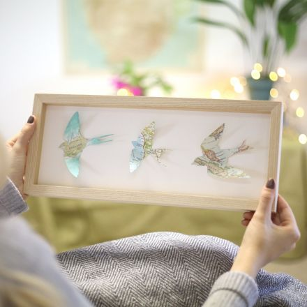 Three map location birds in landscape light wood box frame.