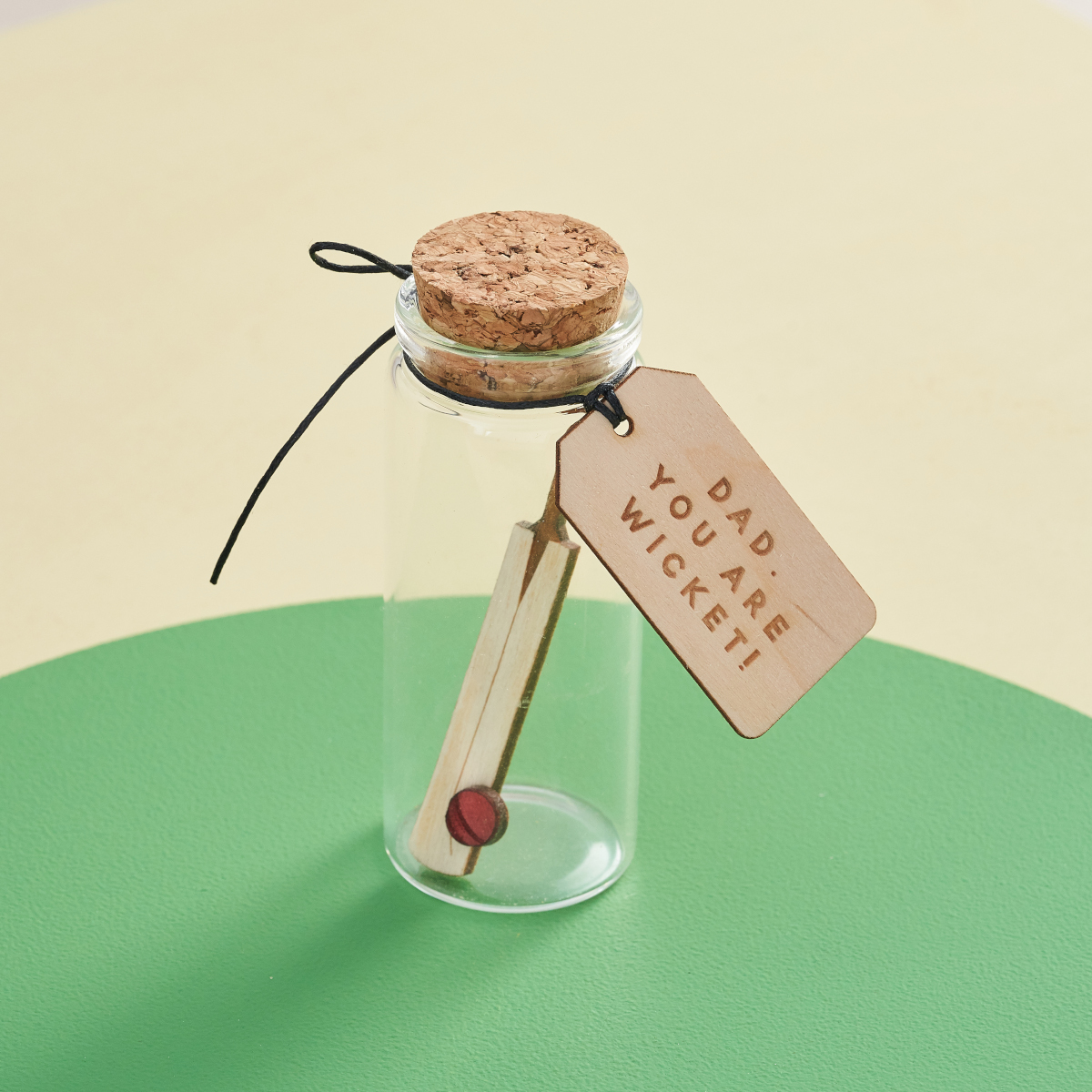 Cricket in a bottle keepsake, perfect gift for cricketers