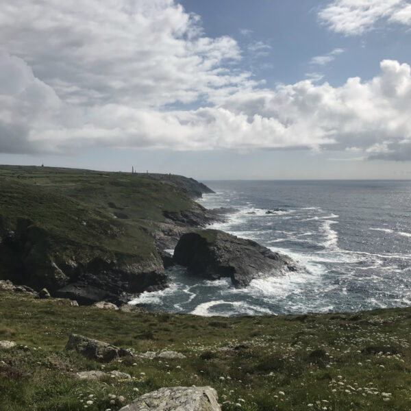 Travel to Cornwall with the Bombus Team
