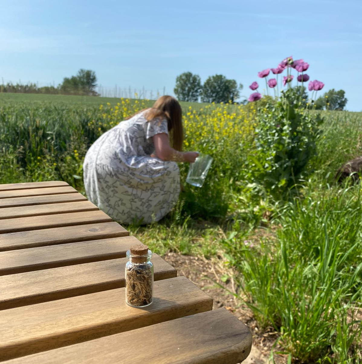 Amber sowing seeds in the Bombus garden